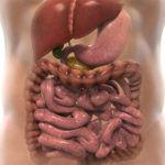 Основные заболевания желудка: симптомы, лечение и диета